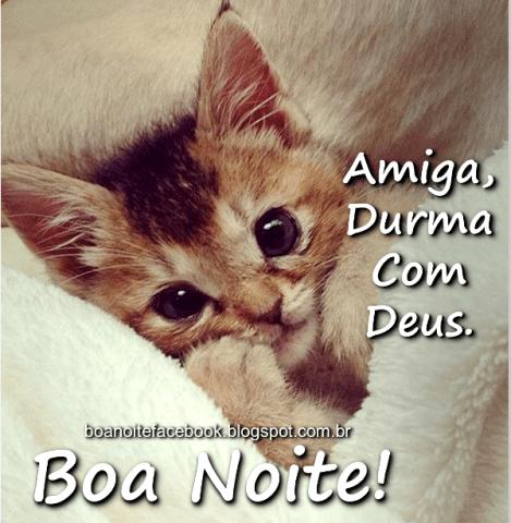 31 Imagens De Boa Noite Com Frases Bonitas E Mensagens