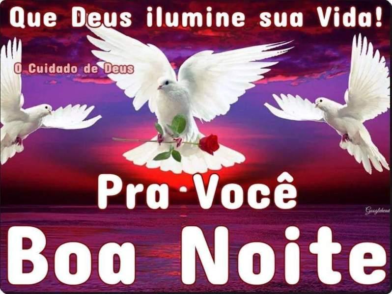 Boa noite com pombos da paz