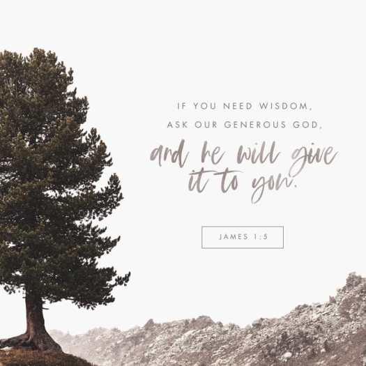 James 1:5 NLT