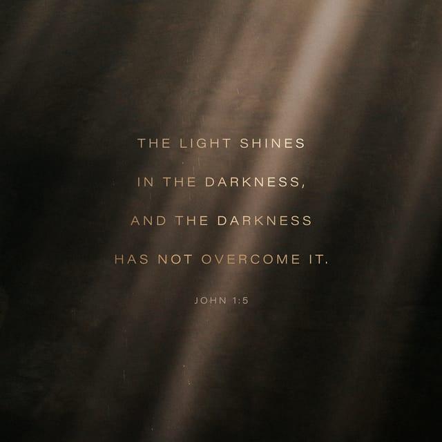 John 1:5 NIV