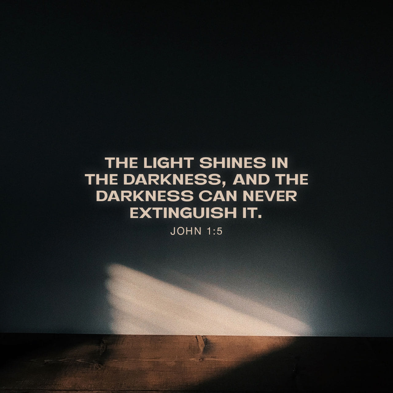 John 1:5 The light shines in the darkness, and the darkness has not  overcome it. | New International Version (NIV) | Download The Bible App Now