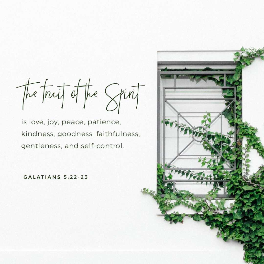 Bible Verse of the Day - day 235 - image 9155 (Galatians 5:22)