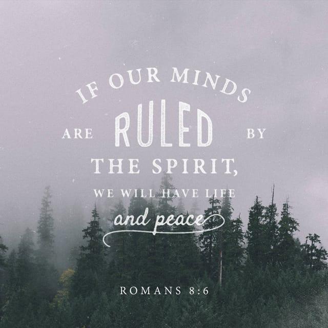 Romans 8:6 - https://www.bibl...