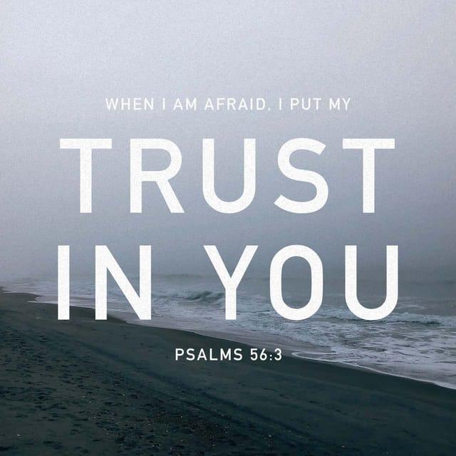 Psalms 56:3 - https://www.bibl...