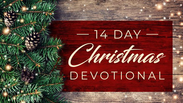 A 14 Day Christmas Devotional of Love by Wanda L Ball