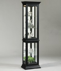 Pulaski Furniture Curios Oxford Black Curio Cabinet - Ivan ...