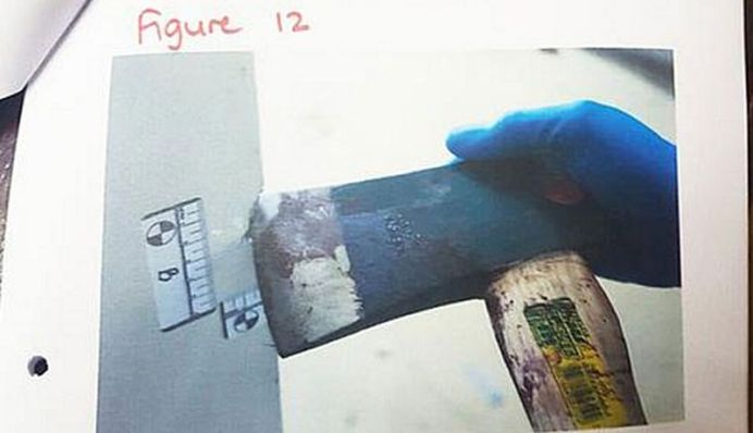 The now 23-year-old allegedly used an axe to kill members of his family. (AAP)
