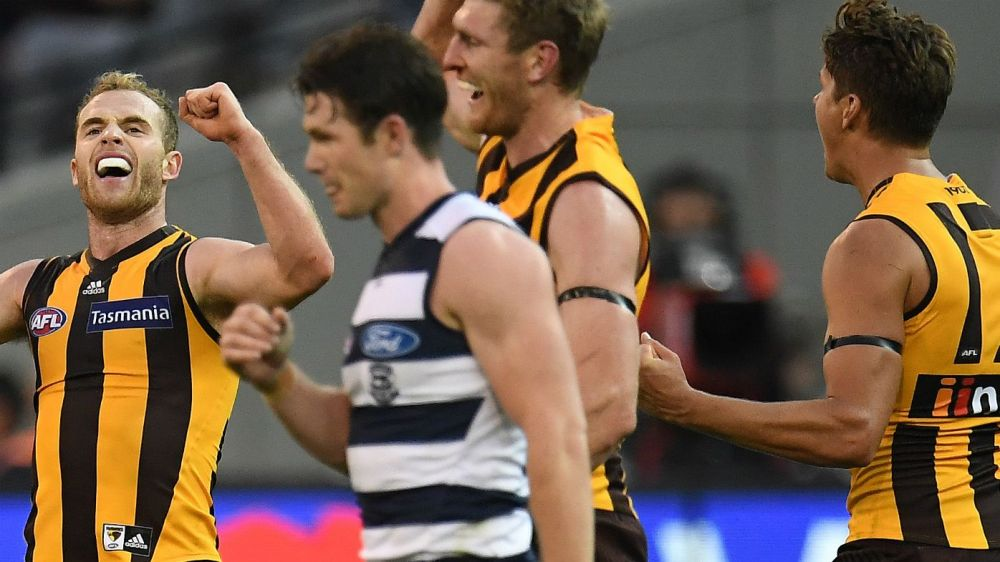 Image result for hawthorn geelong easter