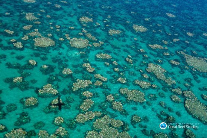 An aerial hptograph of the Great Barrier Reef from April 2017 shows bleaching across large swathes of the water. (AAP)