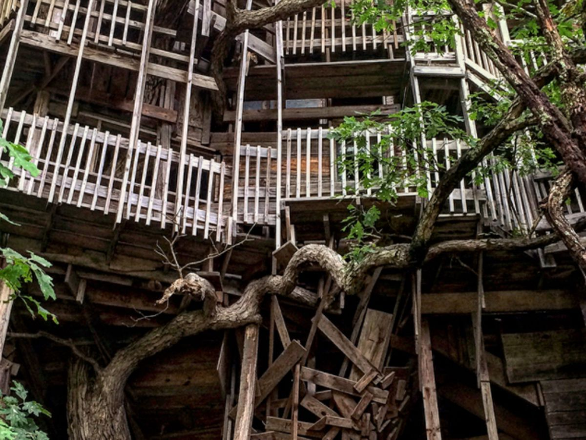 Inside The World S Largest Tree House 9travel