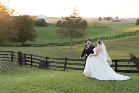 northern virginia photography wedding