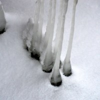 Hanging Ice II