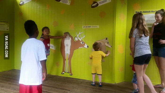 Girl Face Wallpaper For Mobile Interactive Quot Lift And Sniff Quot Area At Akron Zoo To Teach