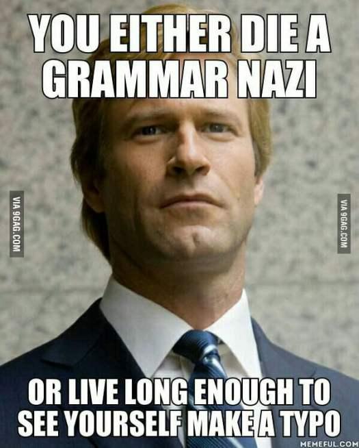Image result for grammar nazi meme