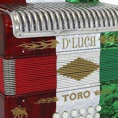 19x33 Kitchen Sink Tiny Appliances D Luca D3112t Gcf Bk Toro Button 手风琴31键12低音on Key 带保护 带保护套和肩带red White Green 亚马逊中国 乐器 海外购美亚直邮