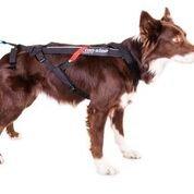 Non-Stop dogwear - Arn茅s para perros 'Non-Stop Freemotion', negro, 5