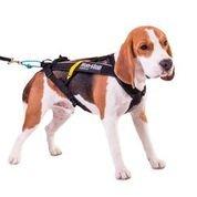 Non-Stop dogwear - Arn茅s para perros 'Non-Stop Freemotion', negro, 4