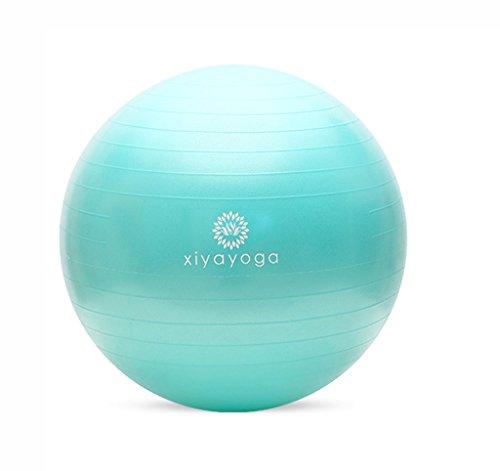 GUORONG Balle de yoga, givré Anti-déflagrant Épaissir ballon de gymnastique Balle pour enfants Femmes enceintes Ballon d'accouchement Ballon... 21