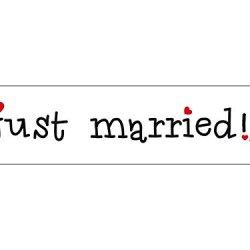 floristikvergleich.de 2 x AUTO SCHILDE KFZ Kennzeichen Autokennzeichen Auto Schmuck Braut Paar Deko Dekoration Autoschmuck Hochzeit Car Auto Wedding Deko PKW (Just Married)