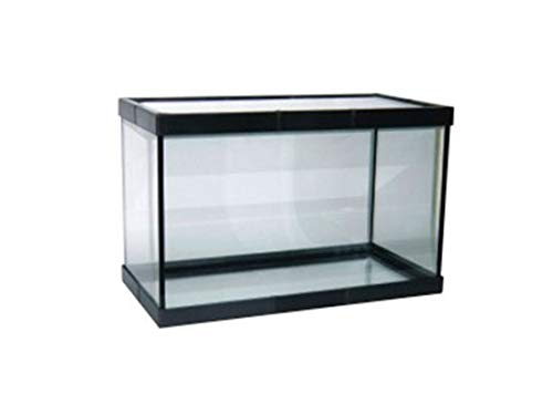 Acuario PECERA DE Cristal para Peces 38 litros
