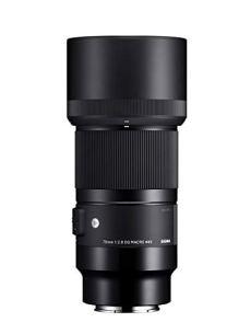 Sigma 70mm F2.8 DG Macro SLR - Objetivo (SLR, 13/10, Objetivos Macro, 0,258 m, Sony E, Automático/Manual)