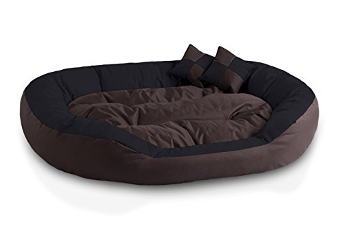 BedDog 4in1 Hundebett SABA/Wende-Hunde-Kissen oval-rund/großes Hundekörbchen/abwischbares Hundebett mit Rand/für drinnen & draußen/XXL/MOCCA/schwarz-braun