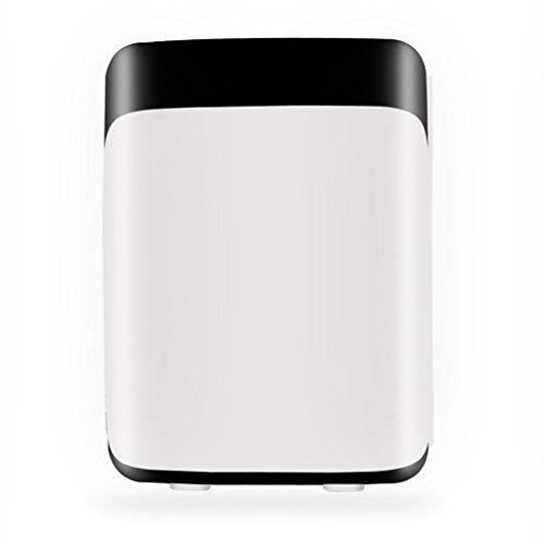 LT&NT Mini frigorifero, 10L domestico/frigorifero elettrico dell'automobile, scatola di...