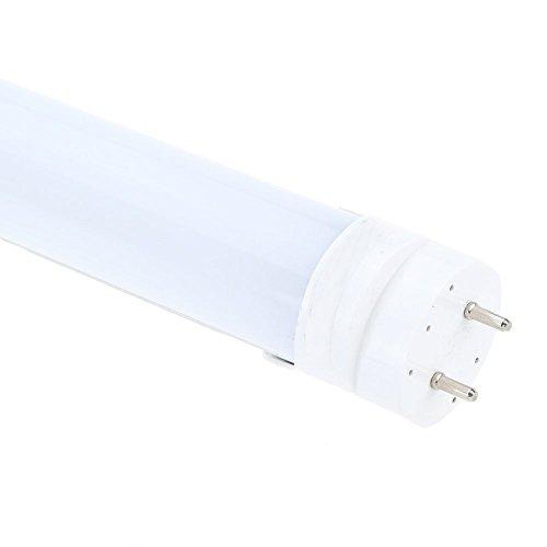 SODIAL(R) Ahorro Energia T8 60cm LED 10W (Equivalente a Fluorescente 40W) Tubo Lampara Luminario Fluorescente Recambio No lastre No UV & IR interior