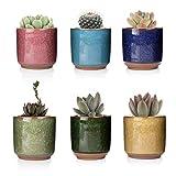 T4U 6.5CM Pots de Fleur en résine Rond Série Pot de Plante Succulente Cactus Fleur - Paquet de 6