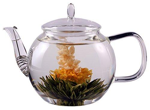 1300 ml tea e caffettiera con setaccio in presa e coperchio in vetro, ideale per 2 persone, lavabile...