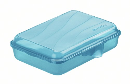 Rotho Funbox Vesperdose 0.45 l, Kunststoff (BPA-frei), blau, 0.45 Liter (16 x 11 x 4 cm)