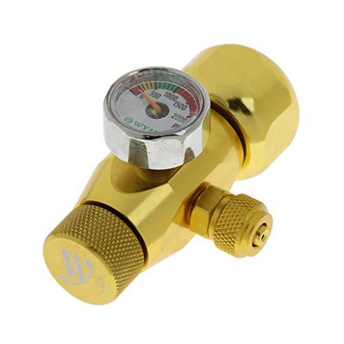 perfk Regolatore di CO2 Acquario W 21,8/ G5 / 8 Orologio Accessori Strumento - Dorato - g5/8