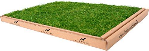 CARNILO Hundeklo aus echtem Rasen, Welpentoilette, Trainingsunterlage, Hundetoilette, stubenrein