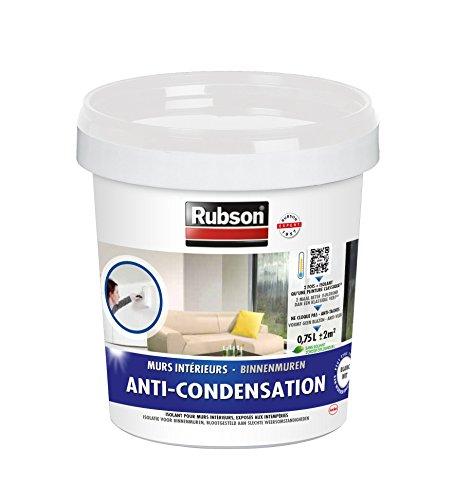 Rubson 1543354 - Pintura antihumedad para paredes interiores, bote de plástico, color blanco, 0,75...