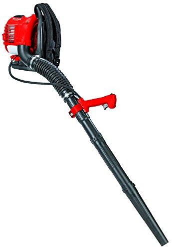 Einhell GC-PB 33 250kmh Negro, Rojo aspiradora de hojas - Soplador de hojas (900 W, 250 kmh, Negro, Rojo, Motor de gasolina de dos tiempos, 353 mm, 417 mm)