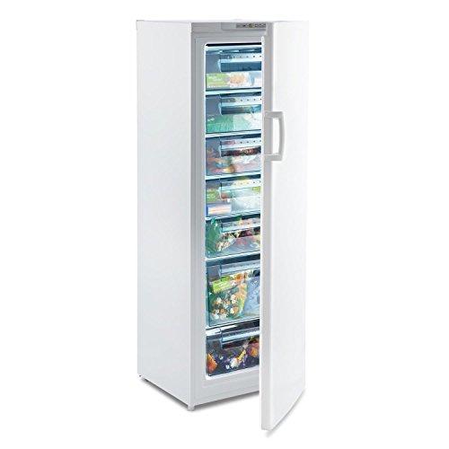 Klarstein Iceblokk 225 • congelatore a 4 stelle • 212 litri freezer• 7 livelli • 170 cm di...