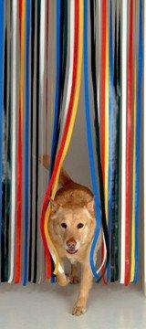 Holland Plastics Original Brand Roehrenblende als Tuervorhang, Fliegen - und Mueckenschutz, Tuerblende - Mehrfarbig - Komplett mit Schraubhaken für Holzrahmen