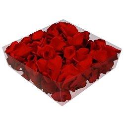 floristikvergleich.de 1l Liter Echte Rosenblätter rot konserviert – Streukörbchen Hochzeit – Dekoration