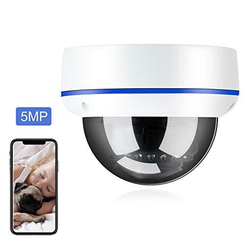 Telecamera IP POE, Videocamera di sorveglianza HD a cupola Supporta ONVIF con rilevamento del movimento, allarme app, Impermeabilità IP66 per esterni/interni(5MP POE IP)