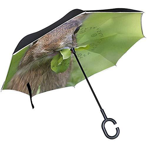 Paraguas inverso invertido Egret Mountain Flower a Prueba de Viento para la Lluvia del Coche al Aire Libre