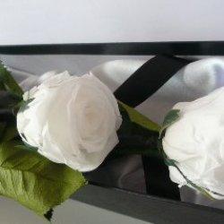 floristikvergleich.de Rosen-te-amo 1 Haltbare stabilisierte Rose in weiß, konservierte Rosen die ihre lebendige Natürlichkeit über eine Ewigkeit behalten.