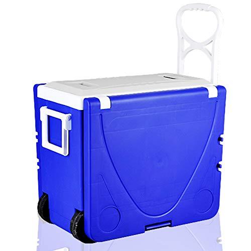 YTBLF Incubatore da 28 Litri, Freezer, Tavolo da Picnic Multifunzione, Tavolo Pieghevole Portatile...