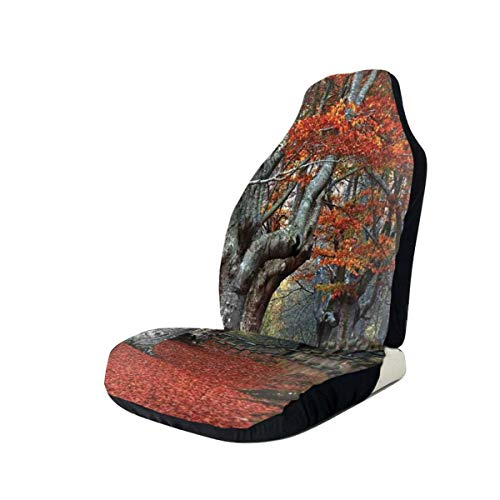 Jiger Seat Covers Vehicle Protector Car Mat, Dreamy Gated Beech Trees Forest with Fall Leaf Mother...