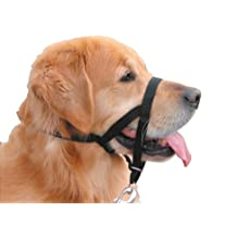 Nobby Easy Leader - Bozal + arnés para perro