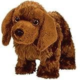 10 razze di cani per bambini piccoli e neonati - 41PGQnGDGpL. SL160