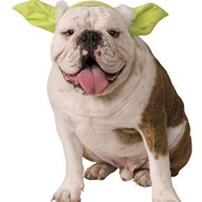 orejas de Yoda para perro y gato M/L