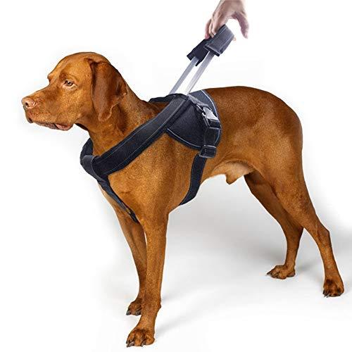 WLDOCA Arnés De Tracción para Perros con Manija para Mascotas Soporte Suave Ajustable Acolchado con Manija Cómoda Y Resistente Robusto para Entrenamiento 58-71Cm (Negro)