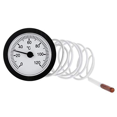 Termometro quadrante 52 mm a pressione capillare tipo termometro per misurare 0-120 °C acqua e...