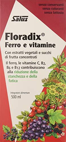 Floradix Integratore Alimentare d'Erbe Ricca di Ferro, 500 ml