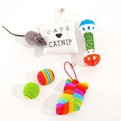 katzeninfo24.de Katzenspielzeug Set, 6 teilig: 2 Bälle, 2 Kissen (mit Glöckchen und Katzenminze), 1 Rassel, 1 Maus